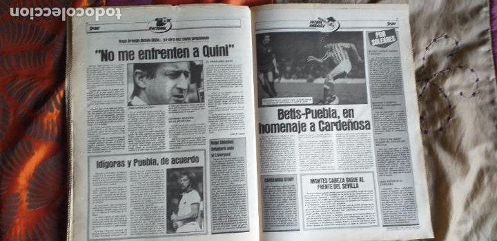 Coleccionismo deportivo: SPORT-Nº612-1981-SCHUSTER-POSTER CENTRAL PLANTILLA ESPAÑOL 82-36 PAGINAS - Foto 6 - 21071575