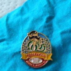 Coleccionismo deportivo: PIN EQUIPO VETERANO RUGBY ELCHE CLUB RUGBY. Lote 172057080
