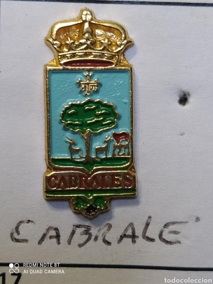 INSIGNIA HERÁLDICOS CABRALES ASTURIAS (Coleccionismo Deportivo - Pins otros Deportes)