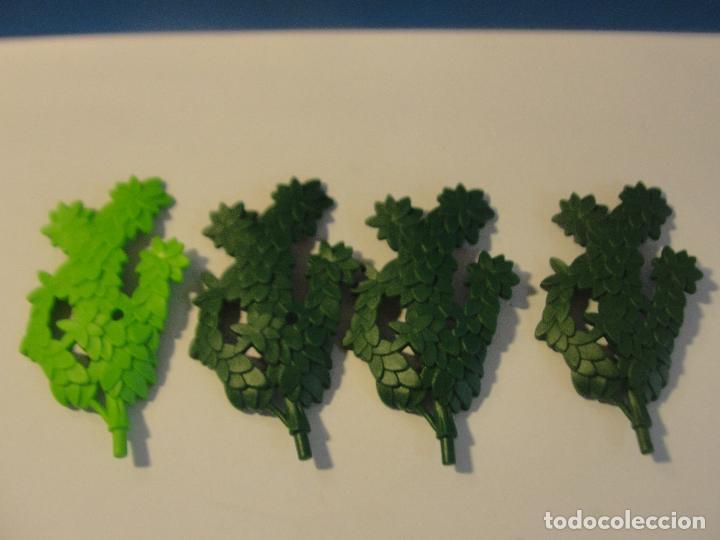 Lote vegetacion 4 planta enredadera medieval we - Verkauft durch ...