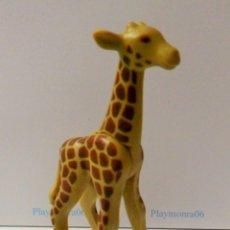 Playmobil: PLAYMOBIL C106 ANIMAL CRIA DE JIRAFA IDEAL ESCENAS SABANA AFRICANA ZOO. Lote 118241608