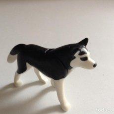 Playmobil: PLAYMOBIL PERRO HUSKY ANIMALES ZOO ESQUIMAL IGLU ESQUIMALES EXPEDICION POLAR NIEVE VARIOS PIEZAS. Lote 262477025