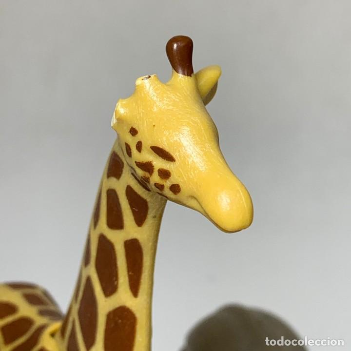 Playmobil: PLAYMOBIL - ANIMALES SAFARI - 2 ELEFANTES CRIA - 1 JIRAFA - LEONA - 2 CEBRAS - Foto 2 - 234719485