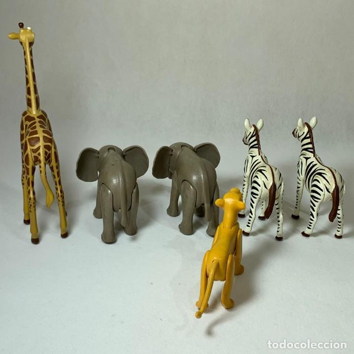 Playmobil: PLAYMOBIL - ANIMALES SAFARI - 2 ELEFANTES CRIA - 1 JIRAFA - LEONA - 2 CEBRAS - Foto 3 - 234719485