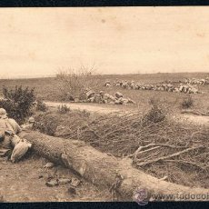 Postales: POSTAL III-10 I GUERRA MUNDIAL BATALLA DE CHAMPAGNE 1916 SIN CIRCULAR. Lote 39888742