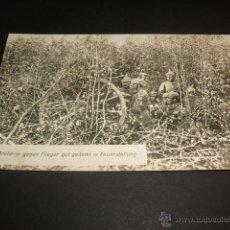 Postales: PRIMERA GUERRA MUNDIAL 1914 ARTILLERIA ALEMANA. Lote 45444996