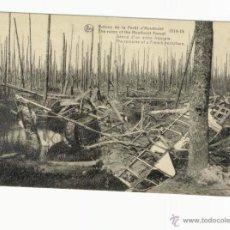 Postales: RUINES DE LA FORÊT D'HOUTHULST 1914-1918. (LOS RESTOS DE UN AVION FRANCÉS). Lote 23828213