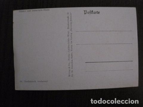 Postales: POSTAL SEGUNDA GUERRA MUNDIAL -II GUERRA MUNDIAL -ORIGINAL -VER REVERSO-(50.778) - Foto 2 - 101396991