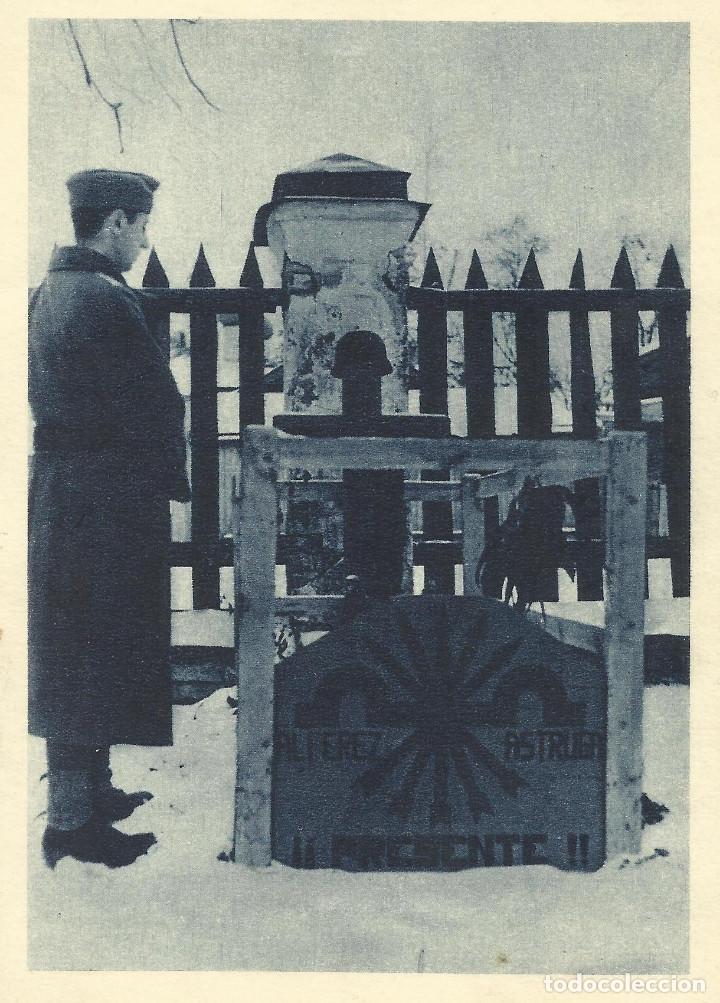 Postales: Conjunto de 5 postales originales de la División Azul (sin circular) - Foto 2 - 145661978
