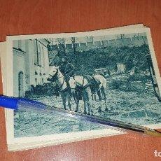 Postales: DIVISION AZUL, EN LA ZONA DE COMBATE, POSTAL SIN CIRCULAR, 15 X 10,5 CM.. Lote 194130253