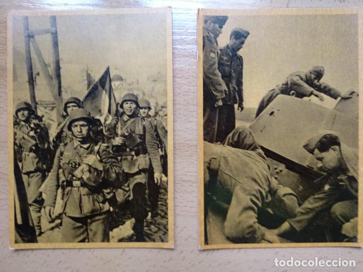 Postales: CUADROS DE LA DIVISION AZUL. LUCHAS DE LOS PUEBLOS EUROPEOS POR UNA NUEVA EUROPA 12 COMPLETA - Foto 5 - 194886868
