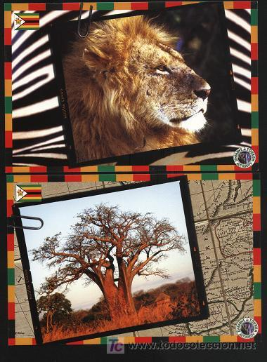 Postales: 5 Postales - sobre zimbabwe (ver otra imagen en fotos adicionales) sin escribir - Foto 2 - 4673191