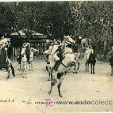 Postales: ARGELIA, MARRUECOS, SCENES ET TYPES, P14343. Lote 5303762