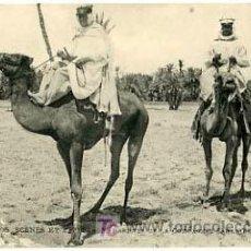 Postales: ARGELIA, MARRUECOS, SCENES ET TYPES, SAHARA, P14344. Lote 5303765