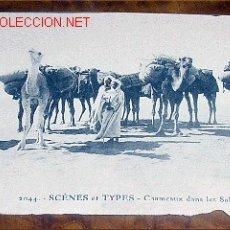Postales: ANTIGUA POSTAL - SCENES ET TYPES - CHAMEAUX DANS LES SABLES - EDICION E.S. - SIN CIRCULAR. Lote 1662945