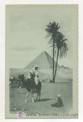 EGIPTO. LA PIRÁMIDE DE CHEOPS. EGYPT. THE PYRAMID OF CHEOPS. (Postales - Postales Extranjero - África)