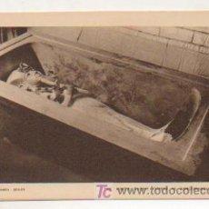 Postales: EGIPTO. TUTANKHAMEN. THE KING'S OUTER COFFIN IN SARCOPHAGUS. . Lote 15243672