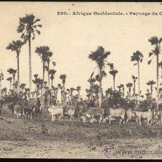 Postales: AFRIQUE OCCIDENTALE - PAYSAGE DU CAYOS. Lote 23937384