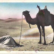 Postales: PS3023 POSTAL FOTOGRÁFICA DE LA SERIE ESCENAS Y TIPOS 'LA ORACIÓN EN EL DESIERTO'. ESCRITA AL DORSO. Lote 25551938