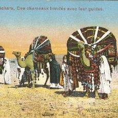 Postales: SAHARA DES CHAMEAUX BONDÉS AVEC LEUR GUIDES. Lote 25949244