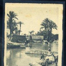 Postales: POSTAL DE MARRUECOS - MARRAKECH UN COIN DE LA PALMERAIE P-AFYMA-326. Lote 29975188