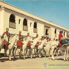 Postales: CASABLANCA - MUSIQUE À CHEVAL DE LA GARDE ROYALE – NO CIRCULADA. Lote 31013231