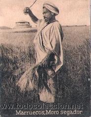 POSTAL ORIGINAL DECADA DE LOS 30. MARRUECOS. MORO SEGADOR. Nº 1480. VER TAMAÑO Y EXPLICACION (Postales - Postales Extranjero - África)