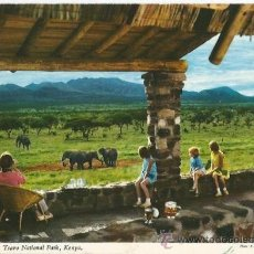 Postales: +-+ PW - 700 - POSTAL - KILAGUNI LODGE, TSAVO NATIONAL PARK - KENYA - SIN CIRCULAR. Lote 32390966