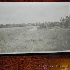 Postales: ANTIGUA FOTOGRAFIA DE GUINEA ECUATORIAL, COLONIA ESPAÑOLA, MIDE 10,5 X 7,5 CMS.. Lote 37440082
