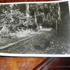 Postales: ANTIGUA FOTOGRAFIA DE GUINEA ECUATORIAL, COLONIA ESPAÑOLA, MIDE 10,5 X 7,5 CMS.. Lote 37440123