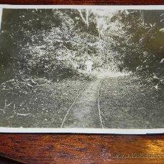 Postales: ANTIGUA FOTOGRAFIA DE GUINEA ECUATORIAL, COLONIA ESPAÑOLA, MIDE 10,5 X 7,5 CMS.. Lote 37440129