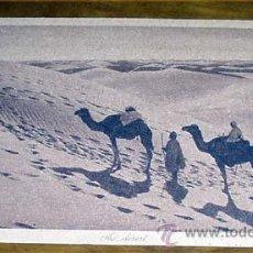 Postales: ANTIGUA POSTAL DE MARRUECOS - AU DESERT- SIN CIRCULAR - DIVIDIDA - EDITEURS L&L. Lote 38238973