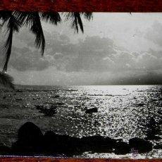Postales: ANTIGUA FOTO POSTAL GUINEA ECUATORIAL ESPAÑOLA - 231. PAISAJE TIPICO - FOTO CALIFORNIA, BATA - NO CI. Lote 38267746