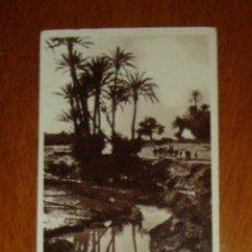 Postales: MARRUECOS. MARRAQUECH / MARRAKECH. EN EL PALMERAL / DANS LA PALMERAIE. FOTO FLANDRÍN. C. 1930. Lote 45678525