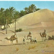 Postales: ** P76 - POSTAL - TUNISIE - CARAVANA DU SAHARA - SIN CIRCULAR. Lote 46298545