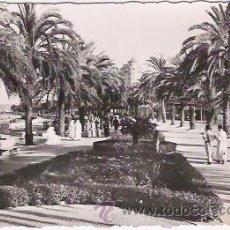 Postales: POSTAL DE TANGER, AVENIDA DE ESPAÑA, CIRCULADA 1968. Lote 47126433