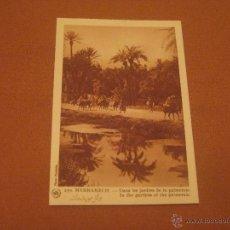 Postales: POSTAL DE MARRAKECH. Lote 47178044