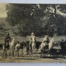Postales: ANTIGUA POSTAL, TETUAN HISTORICO ARBOL DE LA PAZ, FOTOTIPIA HAUSER Y MENET. Lote 50090193
