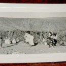 Postales: FOTOGRAFIA DE SIDI IFNI, SAHARA, 1950, MIDE 11,2 X 8,4 CMS.. Lote 54801884