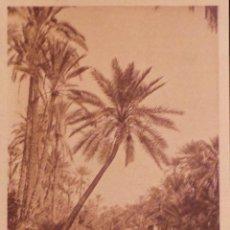 Postales: ANTIGUA POSTAL, ORIGINAL DE MARRUECOS. EDITORES L & L. NO CIRCULADA. Lote 54955724