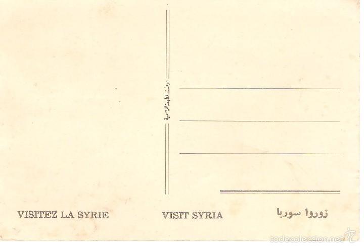 Postales: postal dibujada de syria mezquita de sultan souleiman morque 31/016 - Foto 2 - 58361408