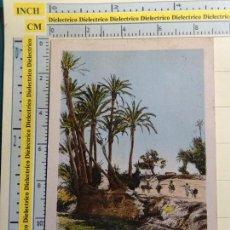 Postales: POSTAL DE MARRUECOS. FECHADA AÑO 1931. MARRAKECH, LA PALMERAIE. 1280 FLANDRIN. 123. Lote 71215001