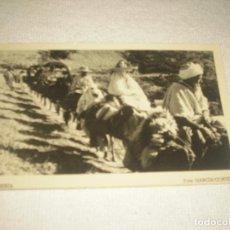 Postales: ROMERIA . MARRUECOS . FOTO GARCIA- CORTES. Lote 81064164