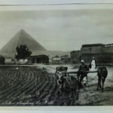 Postales: POSTAL EGIPTO 1931 EL CAIRO. Lote 82344579