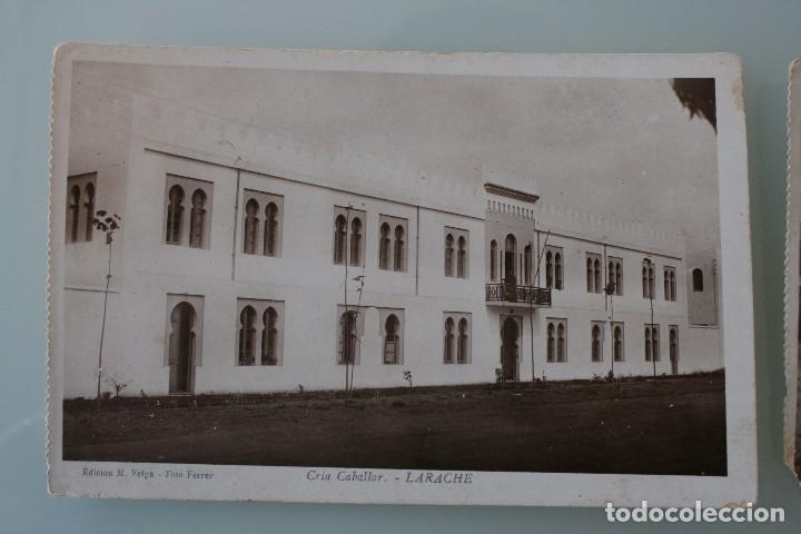 Postales: ANTIGUAS POSTALES DE LARACHE MARRUECOS VISTA PARCIAL CRIA CABALLAR – FOTO FERRER - AÑOS 40 - Foto 2 - 82750216