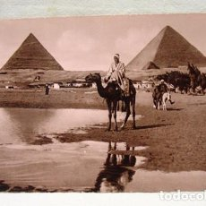Postales: (XAF-1) ANTIGUA POSTAL FOTOGRÁFICA EGIPTO THE PYRAMIDS OF GIZA. SIN CIRCULAR. PIRÁMIDES.. Lote 87439096