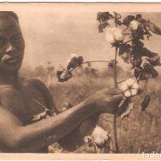 Postales: AFRICA EQUATORIAL, CONGO, RECOLECTOR DE ALGODON, EDIC.BEGUE, SIN CIRCULAR. Lote 95062731