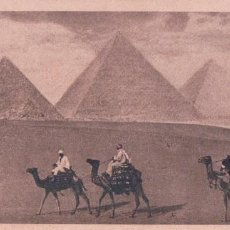 Postales: POSTAL EGYPT - CAIRO - THE PYRAMIDS OF GIZEH 4- 14*8CM. Lote 95407867