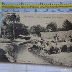 Postales: ANTIGUA POSTAL ÁFRICA NORTE MARRUECOS ARGELIA TUNEZ SAHARA VIVA ÉTNICA. PASTORES OVEJAS. 1470. Lote 97477623
