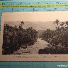 Postales: POSTAL DE ARGELIA. AÑOS 10 30. EL KANTARA. PALMERAL. 1411. Lote 98724243